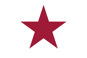 California Lone Star Flag - 1836