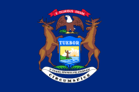 Picture of Michigan Flag