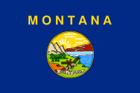 Picture of Montana Flag
